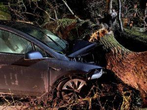 Tesla autopilotas išgelbėjo dvi šeimas po to kai audros nuverstas medis užgriuvo ant automobilių